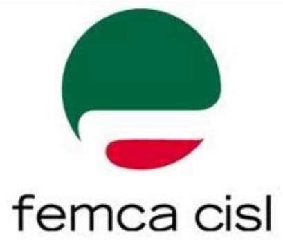 logo-femca2